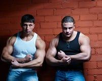 Zwei muskulöse Kerle Stockfoto