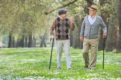 Zwei nette ältere Männer, die in einen Park gehen stockbilder