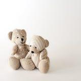 Zwei nette Bären zusammen Stockfotos