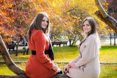 Zwei nette Freundinnen sitzen auf einem Baumast in der Gleichheit lizenzfreies stockbild