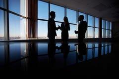 Zwei nette Geschäftsmänner, die über Geschäft während einer von ihnen Computermonitor zeigend sprechen Lizenzfreie Stockfotografie