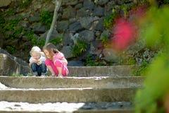 Zwei nette kleine Schwestern, die eine Wanze aufpassen Lizenzfreies Stockbild