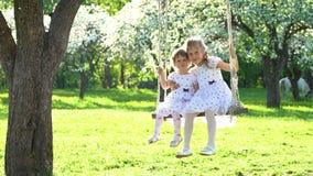 Zwei nette Mädchenschwestern, die auf hölzernem Schwingen im schönen Frühlingszeitpark schwingen stock video
