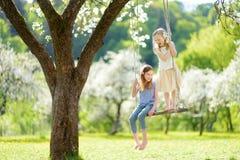 Zwei nette Schwestern, die Spaß auf einem Schwingen in blühendem altem Apfelbaumgarten draußen am sonnigen Frühlingstag haben stockfoto