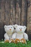 Zwei nette Teddybären, die vor einer Wand eines alten Holzes sitzen Idee Stockbilder
