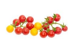 Zwei Niederlassungen der roten Kirschtomate und einiger gelber Tomaten Lizenzfreies Stockbild