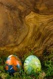 Zwei Ostereier, die im Moos liegen Stockbilder