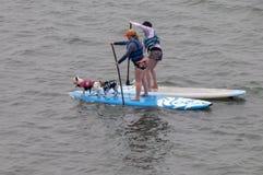 Zwei Paddel-Surfer mit zwei Hunden auf Surfbrettern bei Morro bellen Lizenzfreies Stockfoto