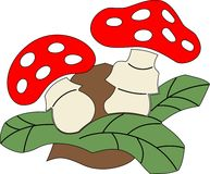 Zwei Pilze Stockfotos