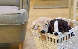 Zwei Plüschwelpen in einem weißen Weidenkorb Weicher Spielzeug-Welpe lizenzfreies stockbild