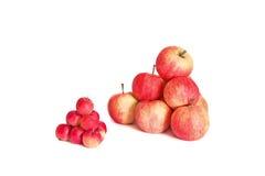Zwei Pyramiden von Äpfeln auf weißem Hintergrund Stockbilder