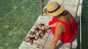 Zwei Rahmen im Video Die Frau in einem roten Kleid sitzt auf einem Pier und betrachtet rote Starfishes Rote Starfish nahaufnahme  stock video