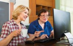 Zwei reife Frauen, die Netz grasen Lizenzfreies Stockfoto