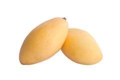 Zwei reife Mangos Lizenzfreie Stockbilder