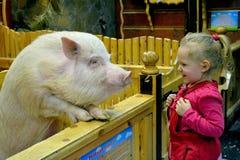 Zwei Reiniger Mädchen und Schwein lizenzfreies stockfoto