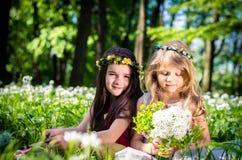 Zwei reizende Mädchen blond und Brünette Lizenzfreies Stockbild