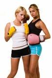 Zwei reizvolle Boxer Stockfoto