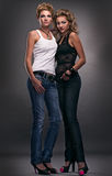 Zwei reizvolle Frauen Lizenzfreie Stockfotografie