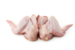Zwei rohe Hühnerflügel Stockbild