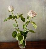 Zwei romantische rosa Rosen auf Schmutzbeschaffenheit Stockfoto