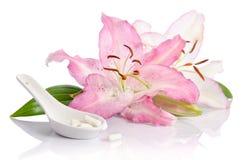 Zwei rosa Lilienblumen mit Pillen Lizenzfreies Stockbild