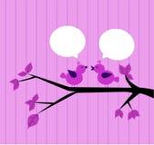 Zwei rosa Vögel Stockbild