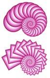 Zwei rosafarbene Fractal-Spiralen lizenzfreie abbildung