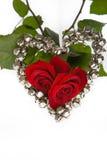 Zwei Rosen für Valentinsgruß Lizenzfreies Stockfoto