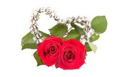 Zwei Rosen für Valentinsgruß Stockbilder