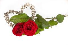 Zwei Rosen für Valentinsgruß Stockfoto