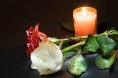 Zwei Rosen und Kerze Stockfoto