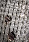 Zwei rostige Nägel im Holz Lizenzfreies Stockbild