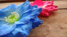 Zwei rot und blaue künstliche Baumwollblumen Stockfotografie