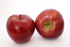 Zwei rote Äpfel Lizenzfreies Stockbild