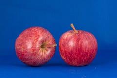 Zwei rote Äpfel lizenzfreie stockfotografie