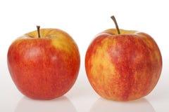 Zwei rote Äpfel auf weißem Hintergrund Stockbild