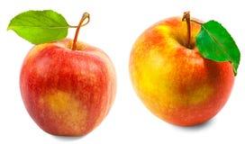 Zwei rote Äpfel mit Blättern auf einem weißen Hintergrund Lizenzfreies Stockbild