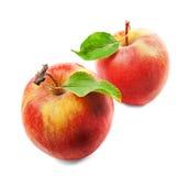Zwei rote Äpfel mit grünen Blättern auf weißem Hintergrund Stockbild