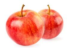 Zwei rote Äpfel schließen oben auf einem weißen Hintergrund lizenzfreies stockfoto