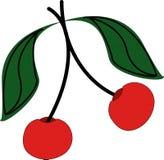 Zwei rote Kirschen Lizenzfreie Stockbilder