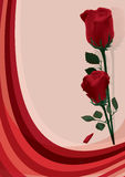 Zwei rote Rosen Lizenzfreie Stockbilder