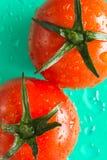 Zwei rote Tomaten mit grünen Blättern Grüner Hintergrund Lizenzfreie Stockfotos