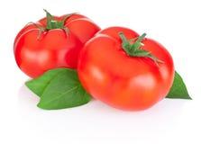 Zwei rote Tomaten und Blätter lokalisiert auf Weiß Lizenzfreies Stockbild