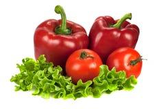 Zwei roter grüner Pfeffer mit zwei Tomaten auf Kopfsalat Lizenzfreie Stockfotografie