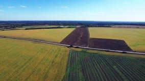 Zwei schöne Felder stock footage
