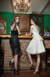 Zwei schöne Brunettedamen in der eleganten Schwarzweiss-Spitze kleidet die Aufstellung in der Weinleselandschaft Lizenzfreies Stockbild