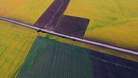 Zwei schöne Felder stock video footage