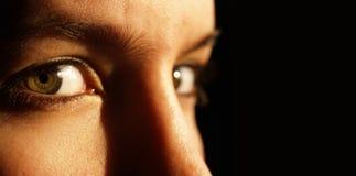 Zwei schöne grüne Augen Stockfotografie