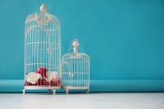 Zwei schöne leere Birdcages auf einem blauen Hintergrund, der Blumendekor Stockbild