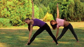 Zwei schöne Mädchen, die Yoga tun